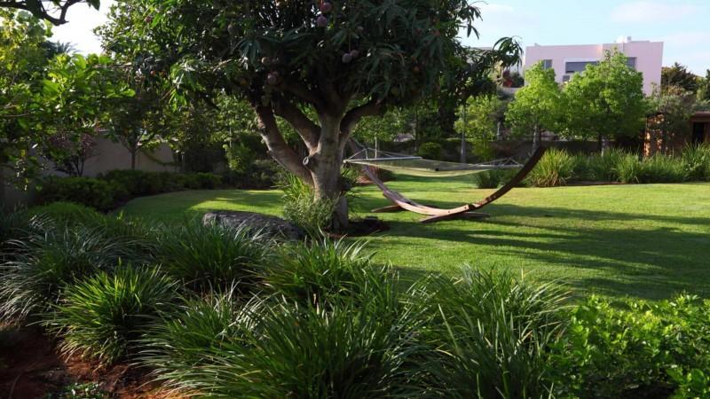 גבעת שפירא-תחושת חורש טבעי עוטפת את הגן