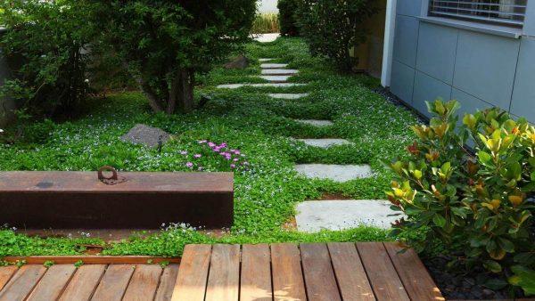 שבילים ומדרגות