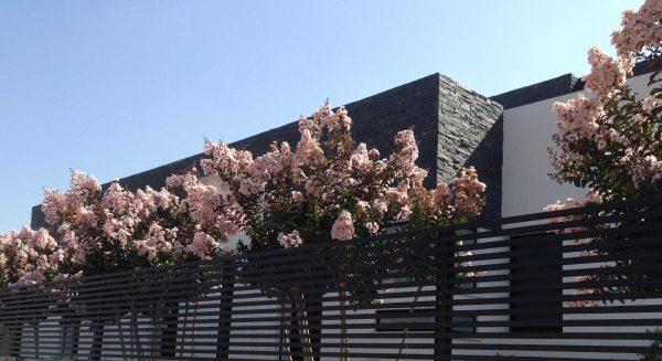 נווה חיים – צבעים של עלוה ופריחה